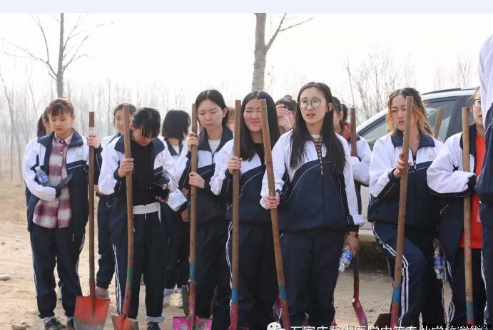 石家庄冀中医学院学子积极开展植树活动